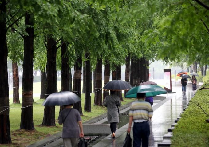 비가 내린 11일 오전 녹음이 우거진 부산 부산진구 송상현광장에서 우산을 쓴 시민들이 산책하고 있다. 연합뉴스 제공