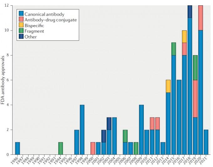 1986년 미국식품의약국(FDA)이 처음 항체치료제를 승인한 이래 10번째 신약이 나올 때가지 15년, 50번째 신약이 나올 때까지 29년이 걸렸다. 그뒤 불과 5년 4개월 만에 50개가 추가돼 지난 4월 100번째 항체치료제가 승인됐다. 네이처 리뷰스 약물 개발 제공