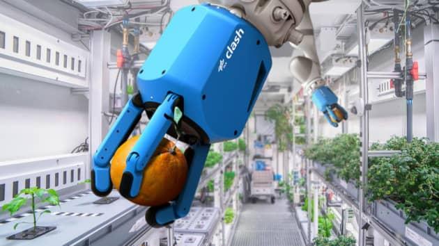 독일 항공우주센터(DLR) 연구진은 무인 자율 온실 시스템을 구현하기 위해 인공지능으로 작동하는 로봇 팔을 개발중이다. 이 로봇팔은 썩은 잎을 잘라내거나 작물을 수확할 수 있다. DLR 제공