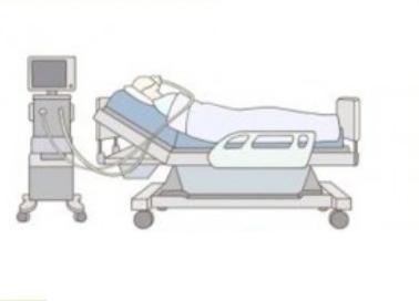 [IBS 코로나19 리포트 시즌2] 인체는 코로나19에 어떤 면역반응을 나타내나