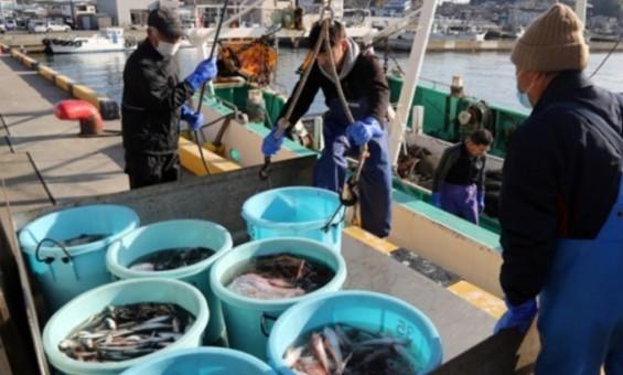 미국, 일 후쿠시마 사고후 도입 식품 수입규제 철폐…일 총리 쿼드 정상회담 참석 맞춰