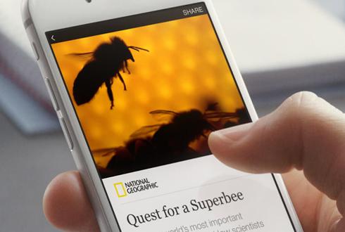 구글 vs 페이스북, 누가 뉴스 전쟁의 승자 될까