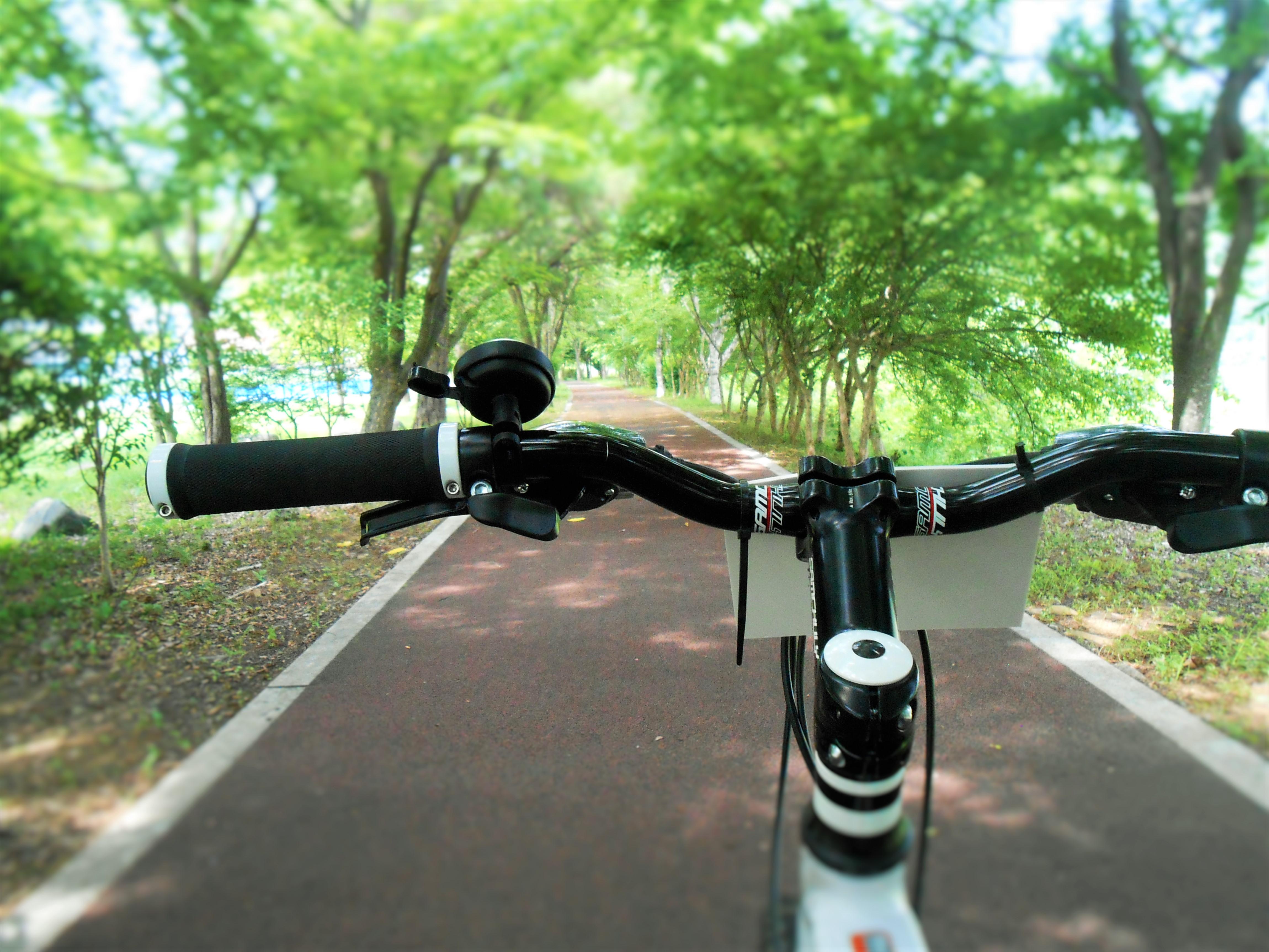 급하게 외울 게 있다면? '가볍게 자전거 10분'부터!