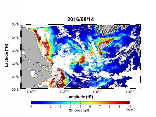 제주 바닷물이 싱거워진 까닭은 중국… 양식 피해 '심각'