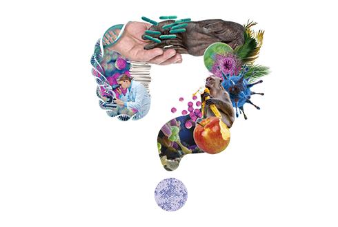 장내미생물은 어디서 왔을까?