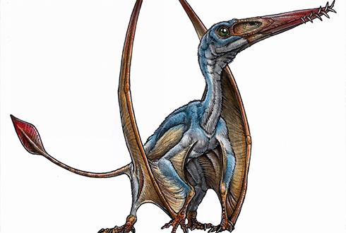 신종 익룡 두개골 화석, 과거 생물 비밀 밝힐까