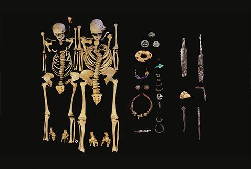 6세기 페스트균의 정체는?