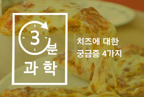 치즈에 대한 궁금증 4가지