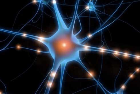 전기신호로 뇌 속 신경세포 자극하는 방법 찾았다