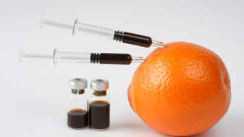 컴퓨터공학자가 오렌지 질병 막는다?