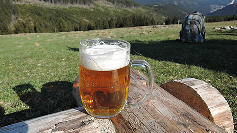 [H의 맥주생활 (27·끝)] 살랑살랑 봄과 어울리는 맥주들