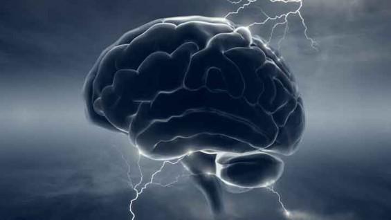 배아 성장, 뇌 발달 비밀 풀 '마이크로RNA' 생성과정 밝혔다