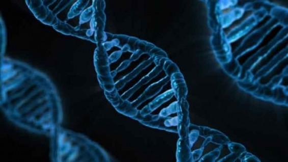 유전자변형생물체 수입승인량, 2년 연속 5% 감소