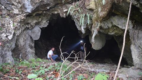 6만년 전, 인도네시아에 초기 인류가 있었다