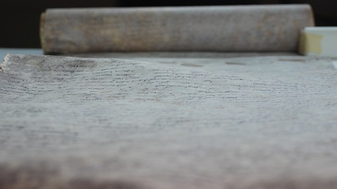옛 양피지 문서 훼손하는 미생물 밝혔다.