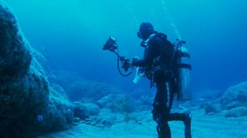 바다목장 가꾸려 환갑 넘어 다이빙
