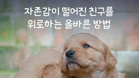 [카드뉴스] 자존감이 떨어진 친구를 위로하는 올바른 방법