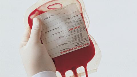 [강석기의 과학카페] 수혈 위기, 인공혈액으로 극복하나