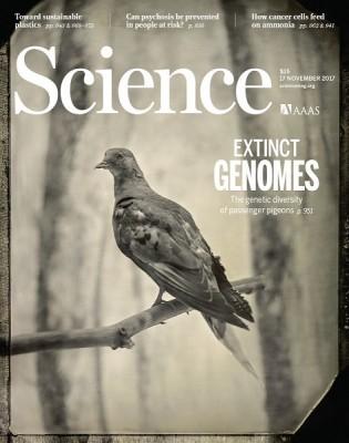 북아메리카 비둘기가 멸종한 원인은?