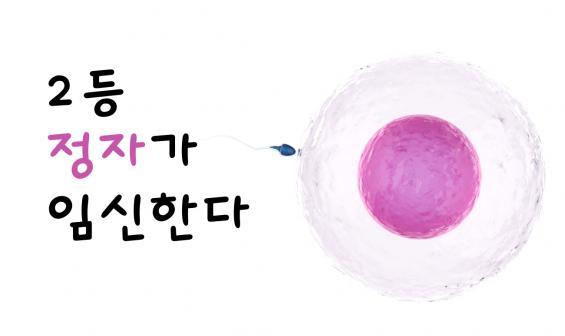 [카드뉴스] 2등 정자가 임신한다
