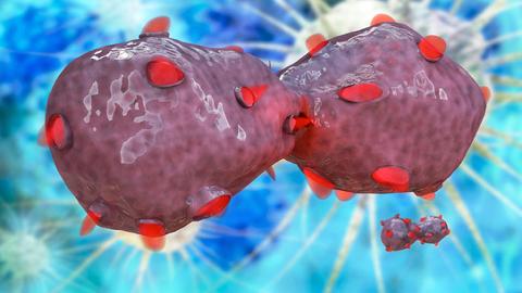 원자력연, 폐암 전이 막는 방사성동위원소 표적 치료제 개발
