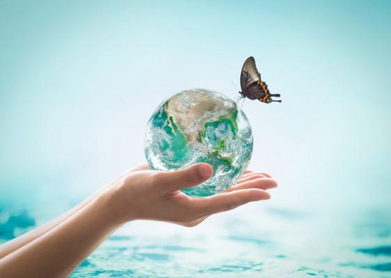 [짬짜면 과학 교실] 생태계 어르신의 한 말씀: 생물과 환경