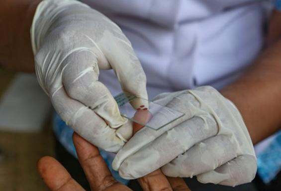 [표지로 읽는 과학] 동남아의 골칫거리?... '변신하는 말라리아 기생충'