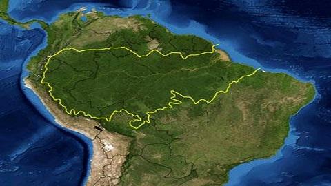 지구의 허파 아마존의 새 설계자는 '제2의 트럼프'