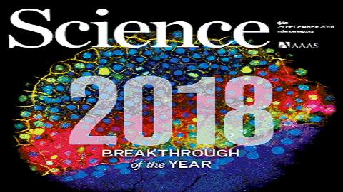 [표지로 읽는 과학] 2018년을 빛낸 획기적 연구 성과