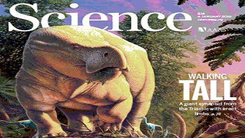 [표지로 읽는 과학] 거대 수궁류는 티라노사우르스 때문에 멸종하지 않았다
