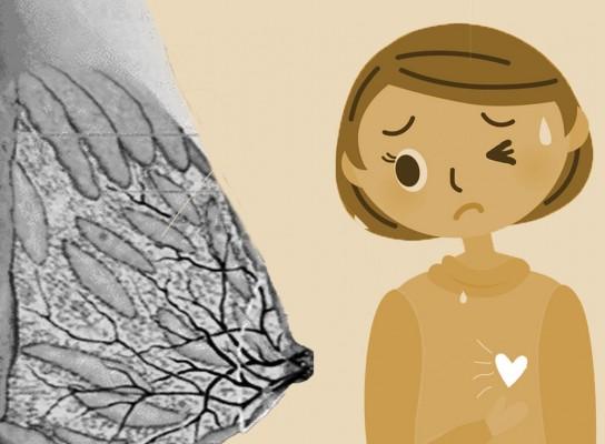 [과학기자의 생생임신체험記] 찌릿찌릿 가슴 통증으로 임신 사실을 알다