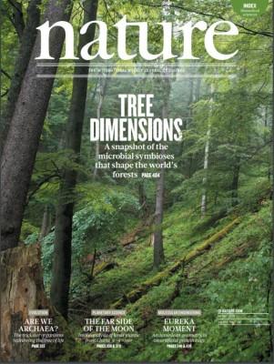 [표지로 읽는 과학] 숲속 생태계가 변하고 있다.