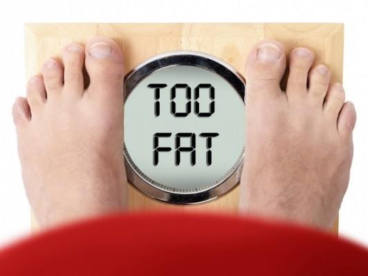 영장류 중 사람만 비만이 많은 이유는…두뇌 활동 탓