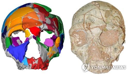 그리스서 21만년 전 현생인류 두개골…아프리카 외 지역서 最古