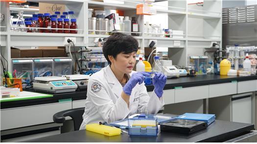 뇌세포 '자가포식'이 치매와 루게릭병 유발한다