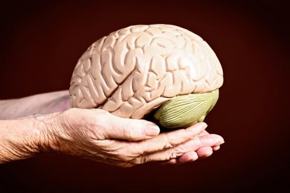 [인류와 질병] 큰 뇌를 가진 인간, 변화에 적응하는 인류에겐 숙명인 질병