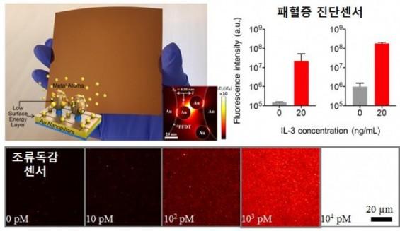 韓美연구팀, 패혈증 2시간 내 검출하는 진단칩 개발