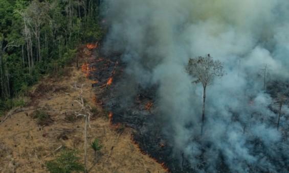 [에코리포트]아마존이 활활 타고 있다