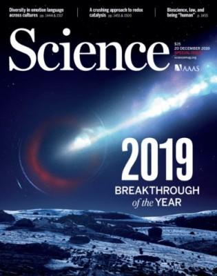 [표지로 읽는 과학] 사이언스가 선정한 올해 최고의 연구성과 '블랙홀 관측'