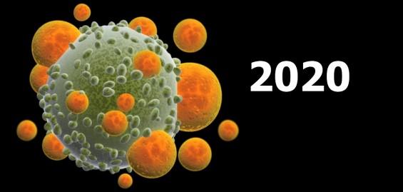 [전망2020] 과학동아가 뽑은 2020년 기대되는 과학 성과