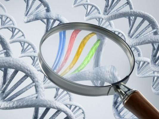 비만 확률·운동 능력·탈모 가능성 유전자 검사 가능해진다