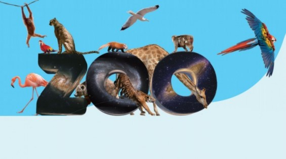 시민의 힘으로 만든 은하 동물원 '갤럭시 주(ZOO)'