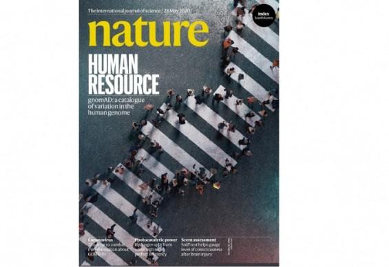 [표지로 읽는 과학] 14만 명의 유전자 지도, 유전질병 잡는 해답 될까