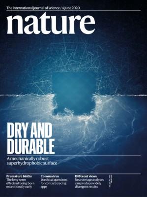 [표지로 읽는 과학] 물 튕겨내는 '초소수성' 유지하며 강성도 높이는 기술 개발