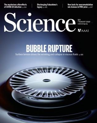 [표지로 읽는 과학]거품 터지는 현상 설명하는 새 이론