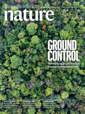[표지로 읽는 과학] 열대우림 토양 탄소 배출량, 예상보다 많다