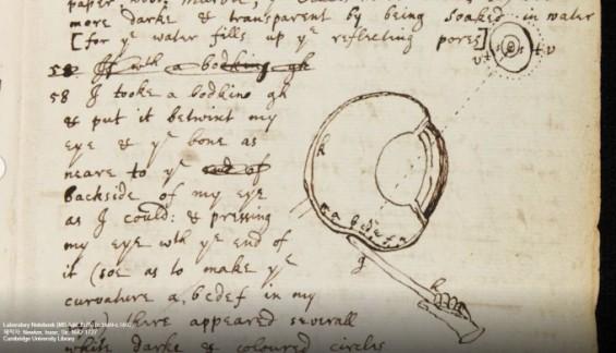뉴턴의 실험 노트 온라인으로 본다