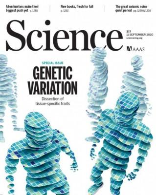 [표지로 읽는 과학]사람 장기마다 발현하는 유전자 다르다