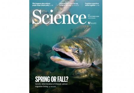 [표지로 읽는 과학] 연어가 봄·가을 강으로 가는 까닭
