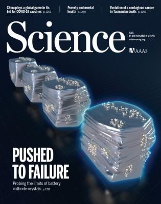 [표지로 읽는 과학] 오래 가는 전기자동차 실현해 줄 단결정 양극재